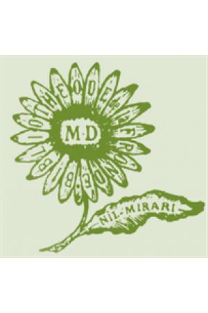 Midi marguerite